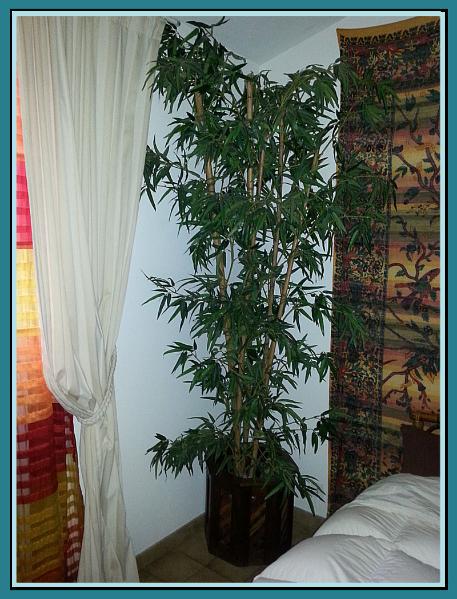 Bambou artificiel, troncs naturels feuillage Tergal