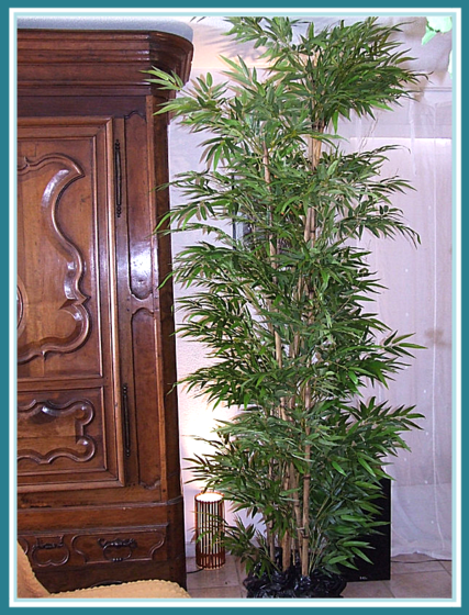 Bambous artificiels sur vraies cannes de bambou