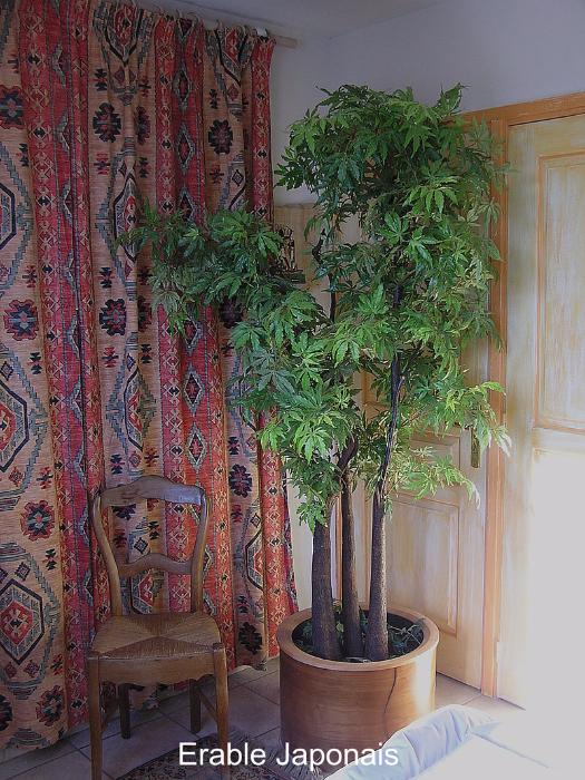 plante artificielle erable japonais tronc naturel. Black Bedroom Furniture Sets. Home Design Ideas